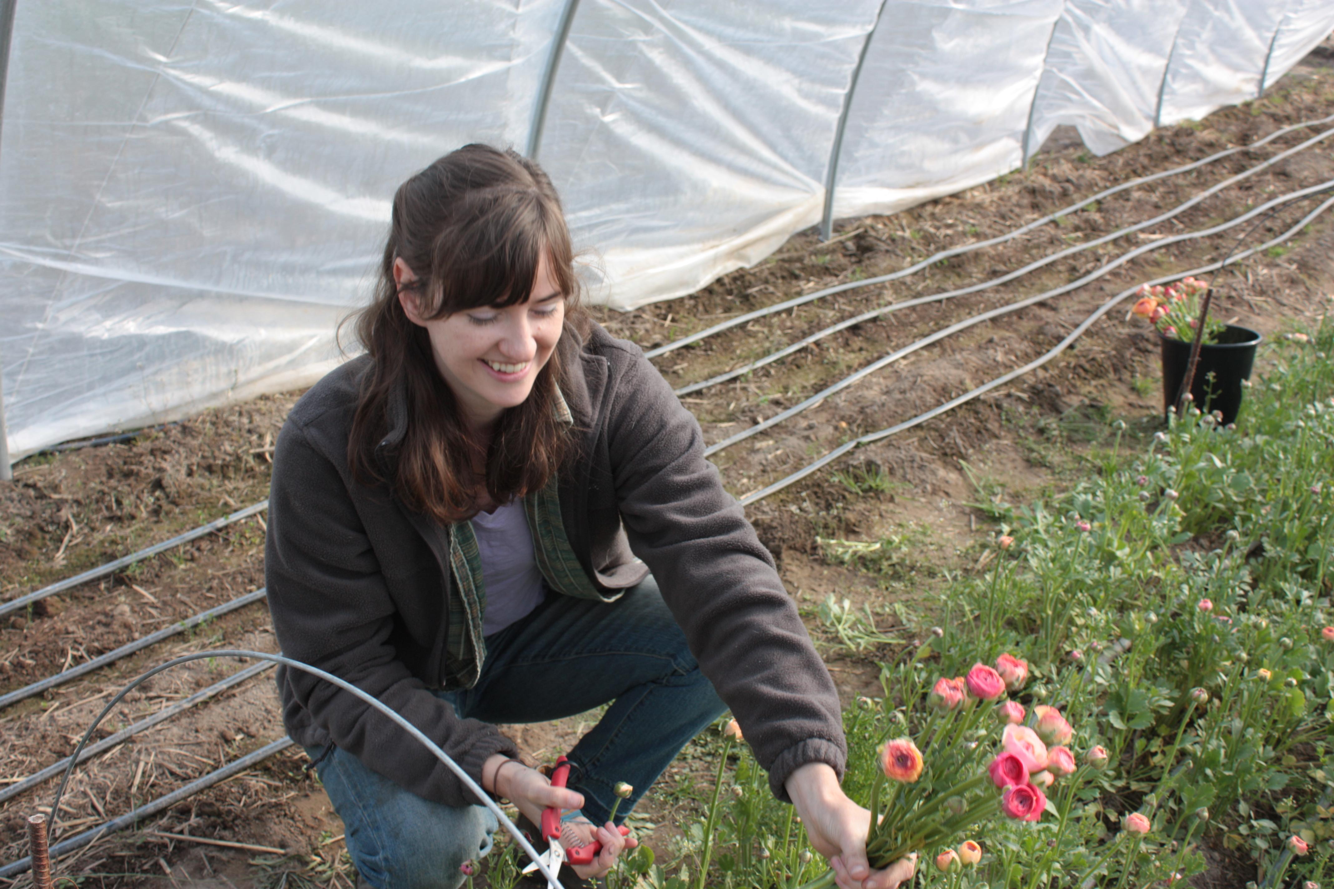 alyssa of Sweet Alyssum Farm