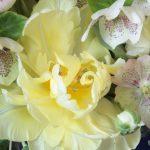 tulip wedding flowers wedding florist seattle wedding florist seattle wedding flowers wedding floral consultation wedding flower consultation