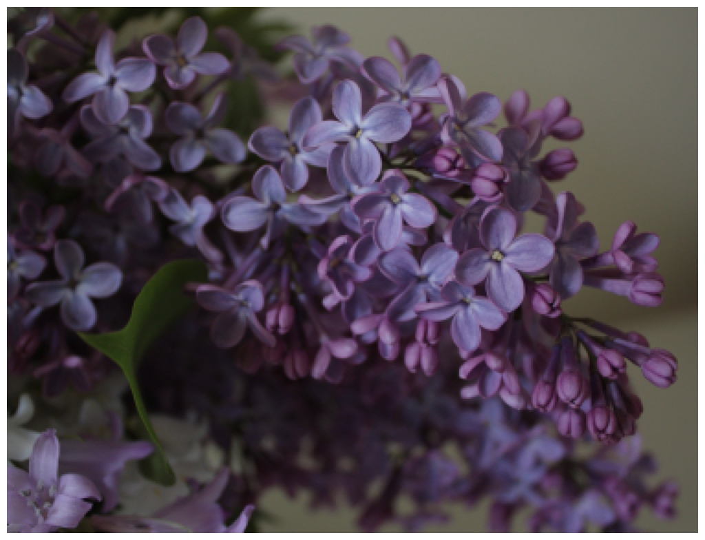 purple lilac in a low light setting in a wedding centerpiece