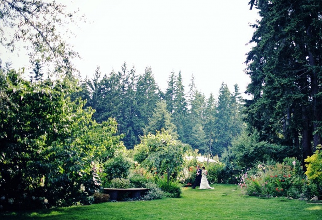 the garden at Fireseed Catering abutting some large evergreen trees