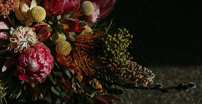 detailed close up of tropical flowers including protea and grevillea