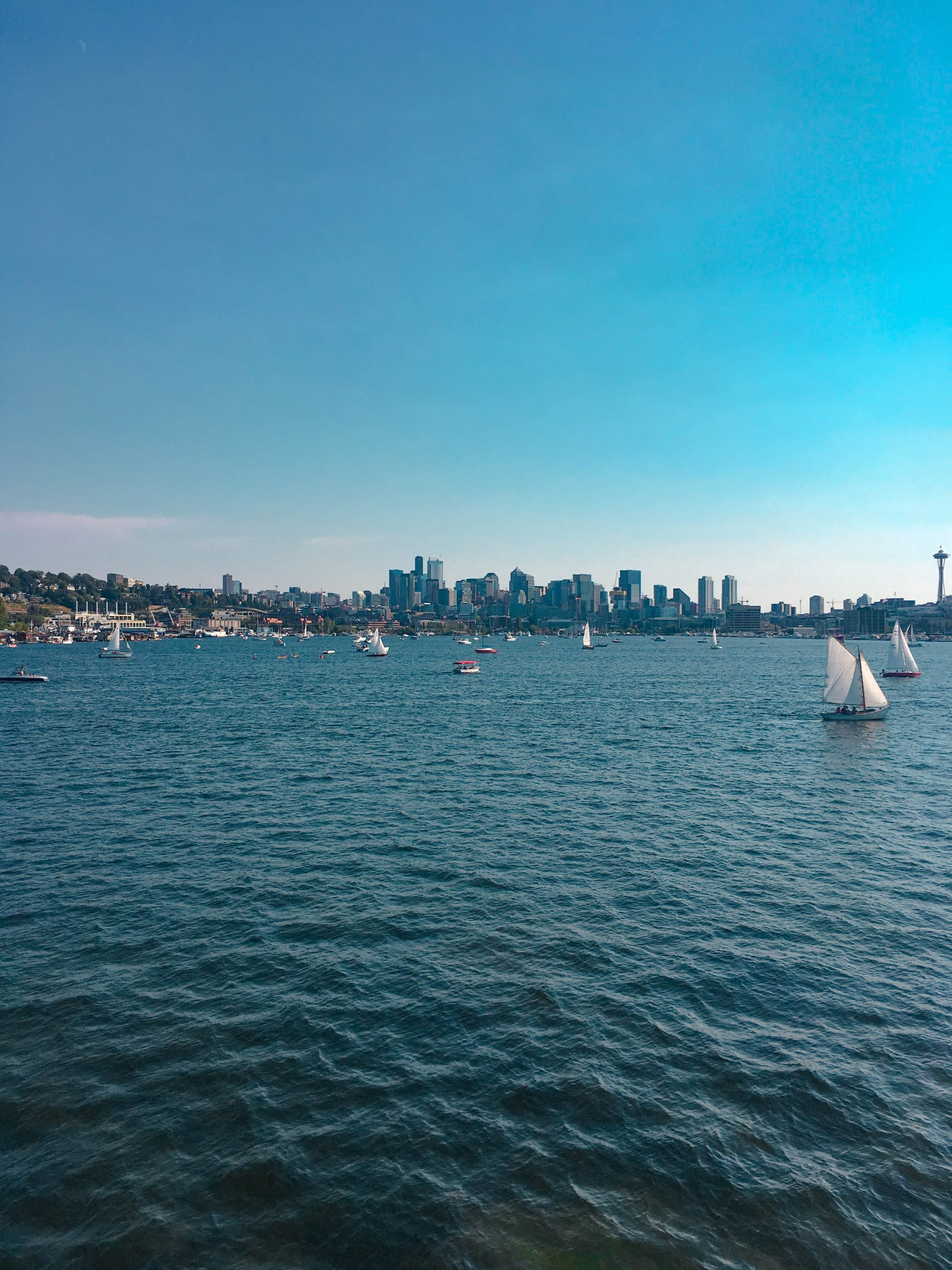 a view of seattle from puget sound